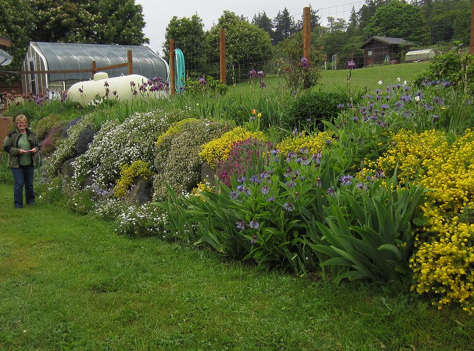 Spring Garden on Lummi Island